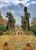 Afifabad_Garden6