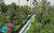 Delgosha_Garden_Shiraz5
