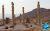 Columns_of_Persepolis
