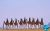 desert_Camel_riding